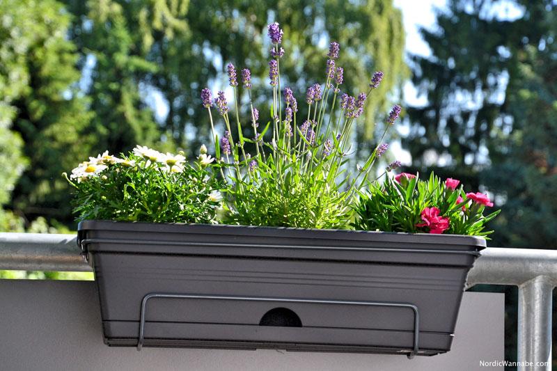 balkoneinrichtung skandinavien ikea boconcept schweden balkonkasten sonnenblumen erdbeeren. Black Bedroom Furniture Sets. Home Design Ideas