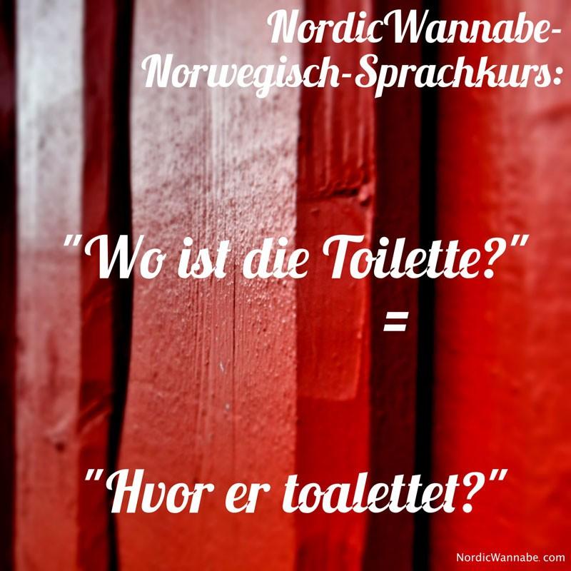 Norwegisch-Sprachkurs, Norwegisch Sprachkurs Wo ist die Toilette Haben Sie Waffeln Wo sind Nordlichter?