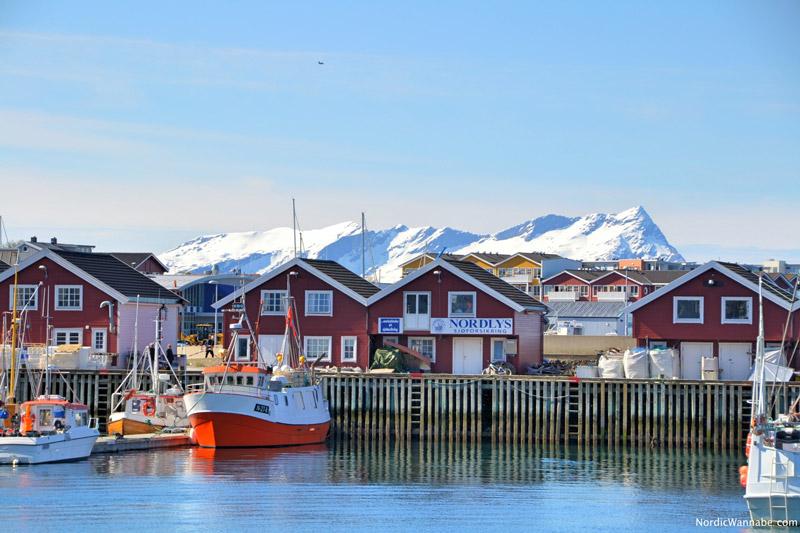 Bodo, Bodö, Bodø, Skandinavien, Norwegen, Blog, Nord-Norwegen, Schnee, Berge, Rote Häuser , typisch