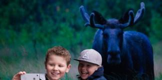 #Besafie, Norwegen, VisitNorway, Skandinavien, Blog, Selfie, Natur, Elch, Fjord