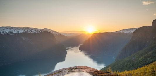 Norwegen, Schaf, Urlaub, Blog, Skandinavien , Natur, Botschafter