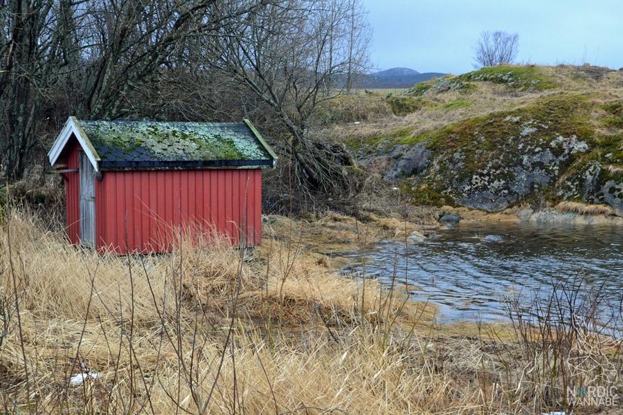 Norwegen, Skandinavien, Saltstraumen, Bodo, Bodø, Bodö, Berge, Fjorde, Blog, Skandiblog, Hygge, Roadtrip, Kreuzfahrt, AIDAcara,