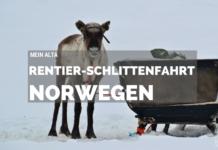 Alta, Norwegen, Nordnorwegen, Masi, Samidaorf, Rentiere, Nordlichter, Schnee, Blog, Skandinavien,