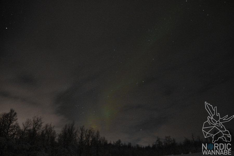 Polarlichter, Nordlichter, Aurora Borealis, Tromsø Safari, Nordlicht Safari, ADIA Selection, AIDA Cars, Kreuzfahrt, Norwegen, Nordnorwegen, Blog, Skandinavien