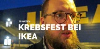 schwedische Krebsfest, Krebse, Schweden, IKEA, IKEA Osnabrück, Lachs, Garnelen, Kräftskiva, Schnapslieder, Köttbullar, Blog, Schweden, Erfahrungen, Möbel