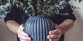 Vasen für Skandinavisch Wohnen, Keramik, Kähler, Bolia,